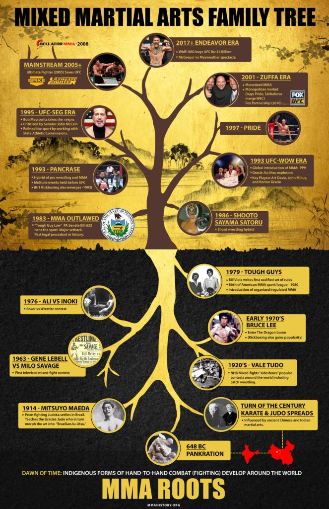martial arts infographic
