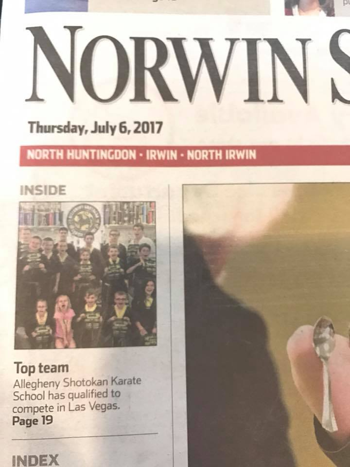 Norwin Ninjas & Viola Karate on Front Page